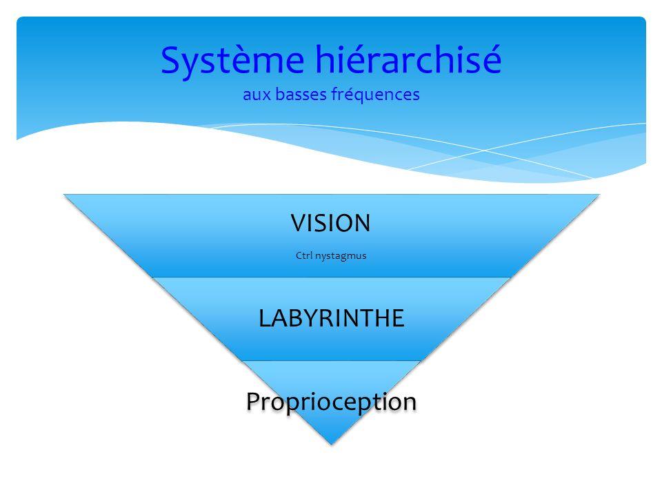 Système hiérarchisé aux basses fréquences VISION Ctrl nystagmus LABYRINTHE Proprioception
