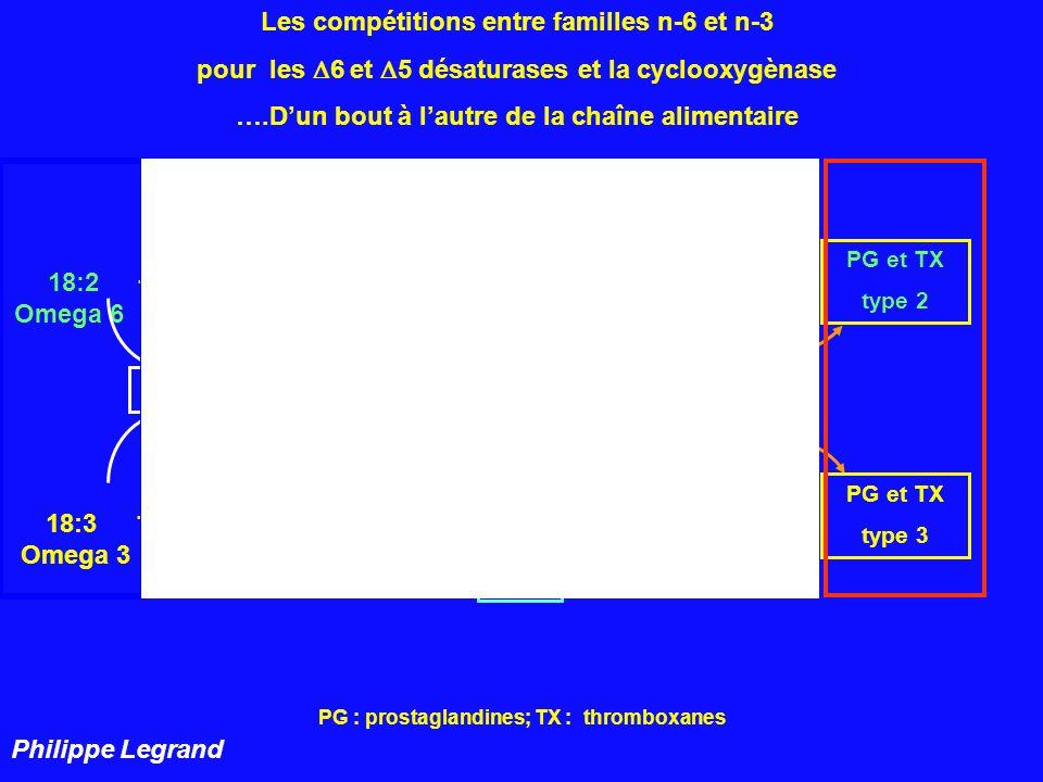 PG : prostaglandines; TX : thromboxanes 22:4 22:5 18:3 18:4 20:3 20:4 20:5 22:5 22:6 n- 6 n - 3 Omega 6 Omega 3 5 cyclooxygènase PG et TX type 2 PG et TX type 3 Les compétitions pour les 6 et 5 désaturases et la cyclooxygènase ….Dun bout à lautre de la chaîne alimentaire 6 Philippe Legrand Dessine moi une chaîne alimentaire harmonieuse…