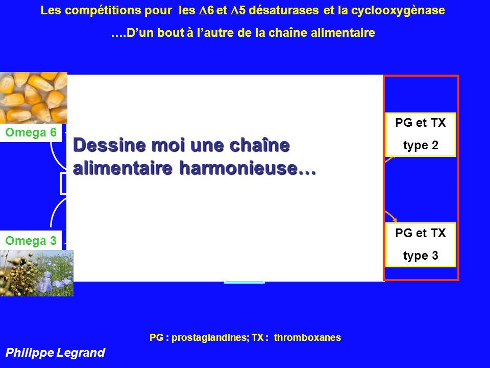 PG : prostaglandines; TX : thromboxanes 22:4 22:5 18:3 18:4 20:3 20:4 20:5 22:5 22:6 n- 6 n - 3 18:2 18:3 5 cyclooxygènase PG et TX type 2 PG et TX type 3 Les compétitions pour les 6 et 5 désaturases et la cyclooxygènase ….Dun bout à lautre de la chaîne alimentaire 6 Adapté de Philippe Legrand AINS AINS Et dessine moi une chaîne alimentaire déséquilibrée…