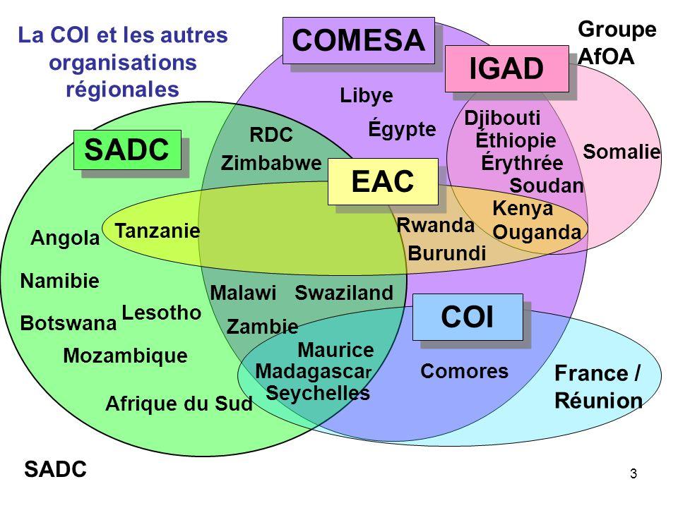 3 Libye Djibouti Somalie Angola Botswana Lesotho Mozambique Afrique du Sud Malawi Zambie Zimbabwe Swaziland COMESA IGAD Comores Maurice Kenya Ouganda