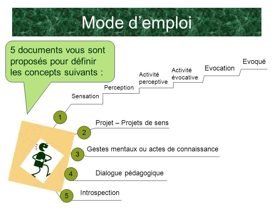 Mode demploi 5 documents vous sont proposés pour définir les concepts suivants : Perception Activité perceptive Evocation Activité évocative Evoqué Se