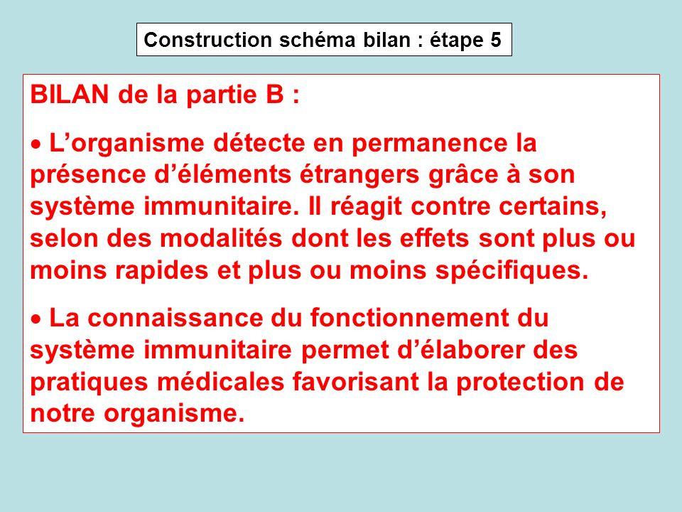 Construction schéma bilan : étape 5 BILAN de la partie B : Lorganisme détecte en permanence la présence déléments étrangers grâce à son système immuni