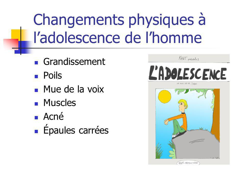 Changements physiques à ladolescence de lhomme Grandissement Poils Mue de la voix Muscles Acné Épaules carrées