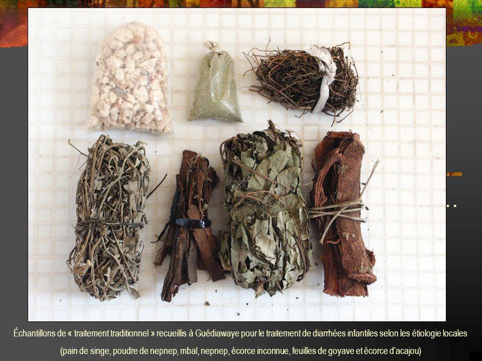 … Échantillons de « traitement traditionnel » recueillis à Guédiawaye pour le traitement de diarrhées infantiles selon les étiologie locales (pain de