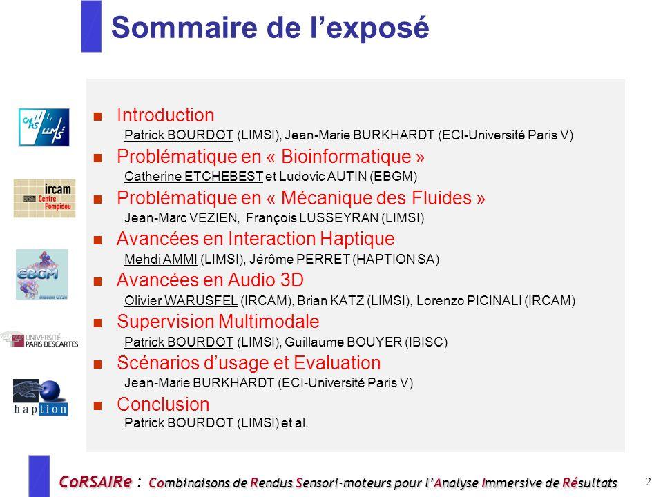 CoRSAIRe Combinaisons de Rendus Sensori-moteurs pour lAnalyse Immersive de Résultats CoRSAIRe : Combinaisons de Rendus Sensori-moteurs pour lAnalyse I