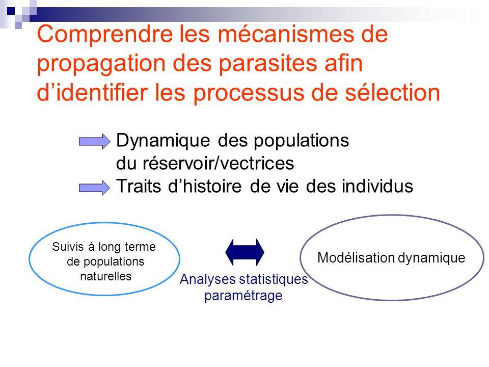 Comprendre les mécanismes de propagation des parasites afin didentifier les processus de sélection Modélisation dynamique Analyses statistiques paramé
