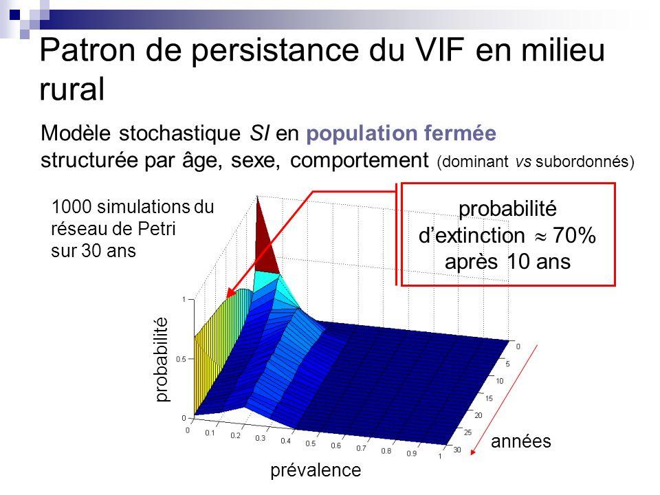 Patron de persistance du VIF en milieu rural très forte probabilité dextinction du VIF en population close pas en adéquation avec les observations prise en compte de la structure en métapopulation Réintroduction fréquente du virus population B population A Mâles dominants combats