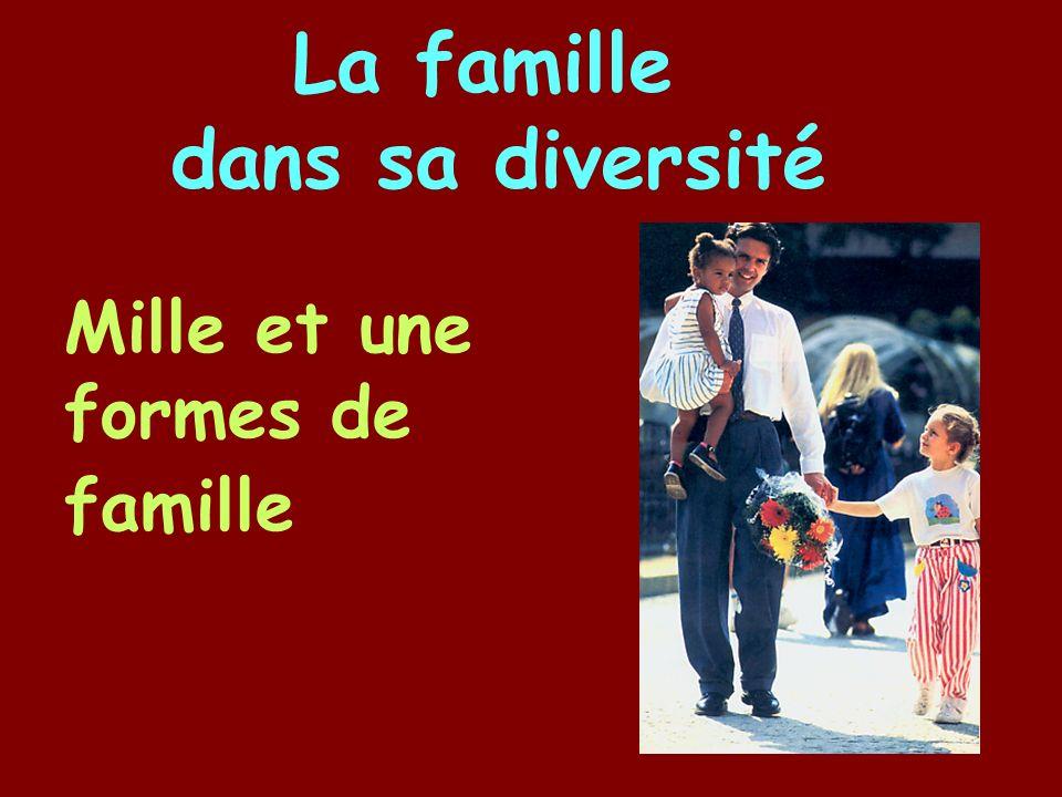 Mille et une formes de famille La famille dans sa diversité