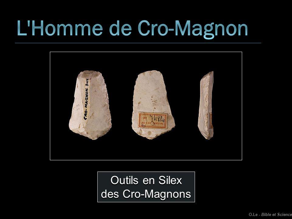 Outils en Silex des Cro-Magnons O.Le - Bible et Science