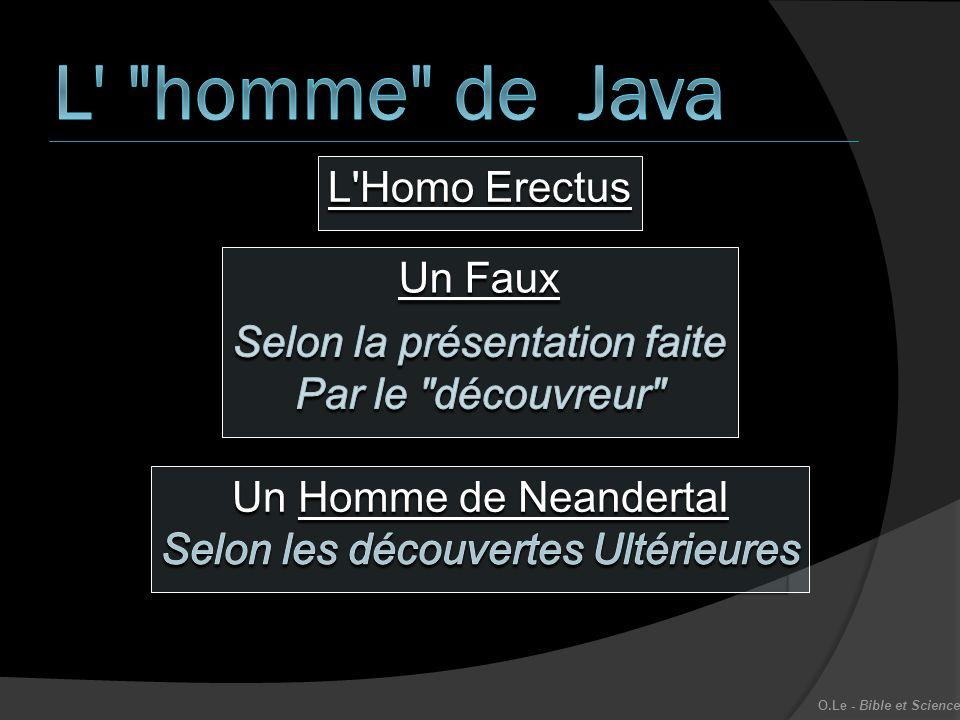 L'Homo Erectus O.Le - Bible et Science