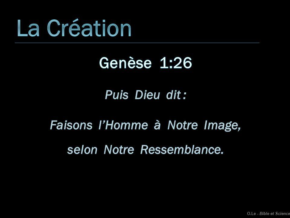 Un Porc O.Le - Bible et Science