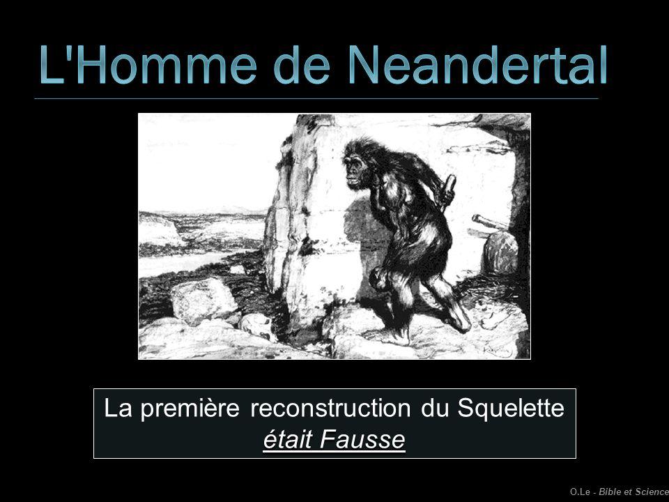 La première reconstruction du Squelette était Fausse O.Le - Bible et Science