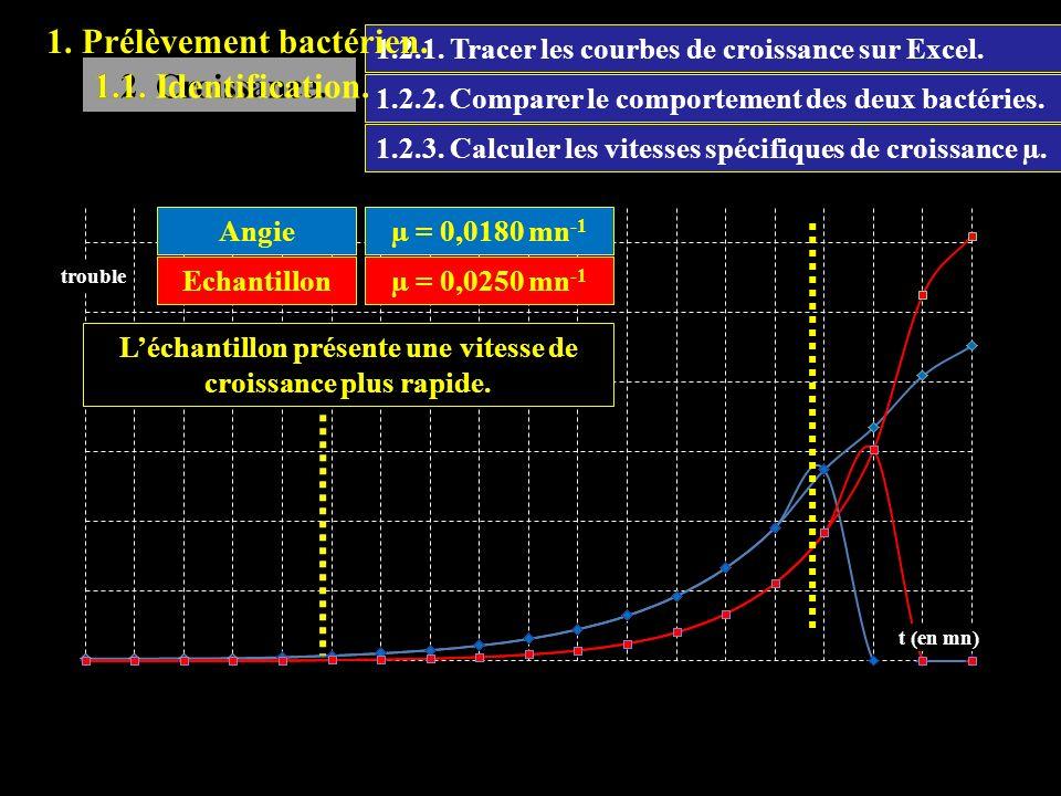 1.2.1. Tracer les courbes de croissance sur Excel. 1.2. Croissance. 1.2.2. Comparer le comportement des deux bactéries. Léchantillon présente une vite