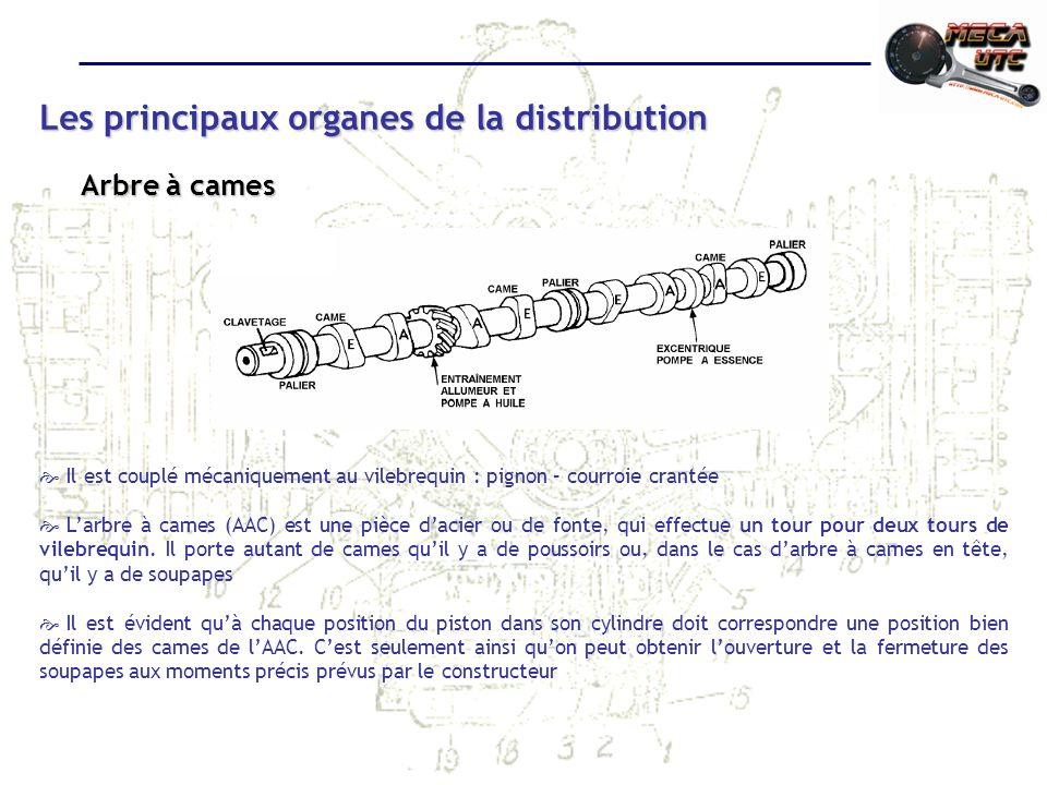 Les principaux organes de la distribution Arbre à cames Il est couplé mécaniquement au vilebrequin : pignon – courroie crantée Larbre à cames (AAC) est une pièce dacier ou de fonte, qui effectue un tour pour deux tours de vilebrequin.