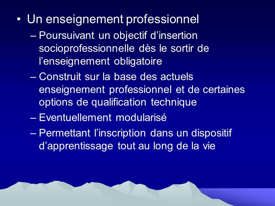 Un enseignement professionnel –Poursuivant un objectif dinsertion socioprofessionnelle dès le sortir de lenseignement obligatoire –Construit sur la ba
