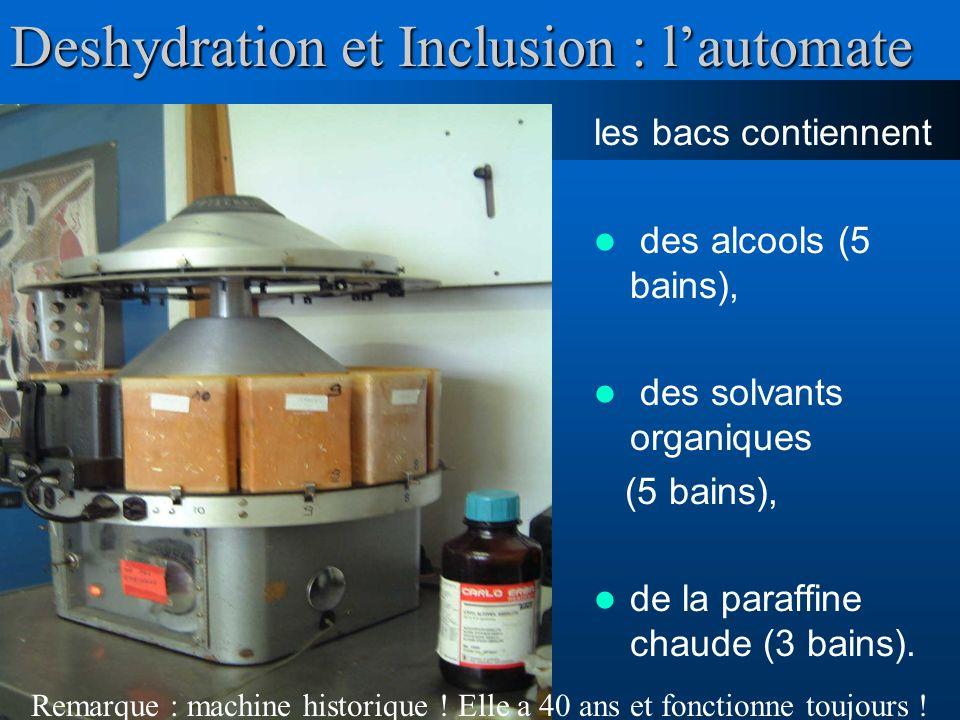 Deshydration et Inclusion : lautomate les bacs contiennent des alcools (5 bains), des solvants organiques (5 bains), de la paraffine chaude (3 bains).
