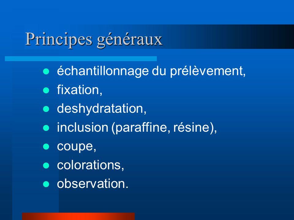 Principes généraux échantillonnage du prélèvement, fixation, deshydratation, inclusion (paraffine, résine), coupe, colorations, observation.