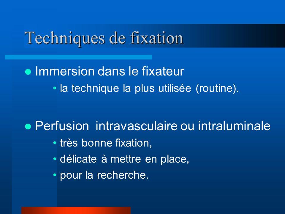 Techniques de fixation Immersion dans le fixateur la technique la plus utilisée (routine). Perfusion intravasculaire ou intraluminale très bonne fixat