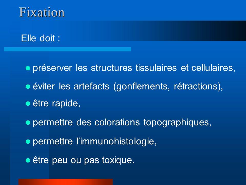 Fixation être rapide, permettre des colorations topographiques, permettre limmunohistologie, être peu ou pas toxique. préserver les structures tissula