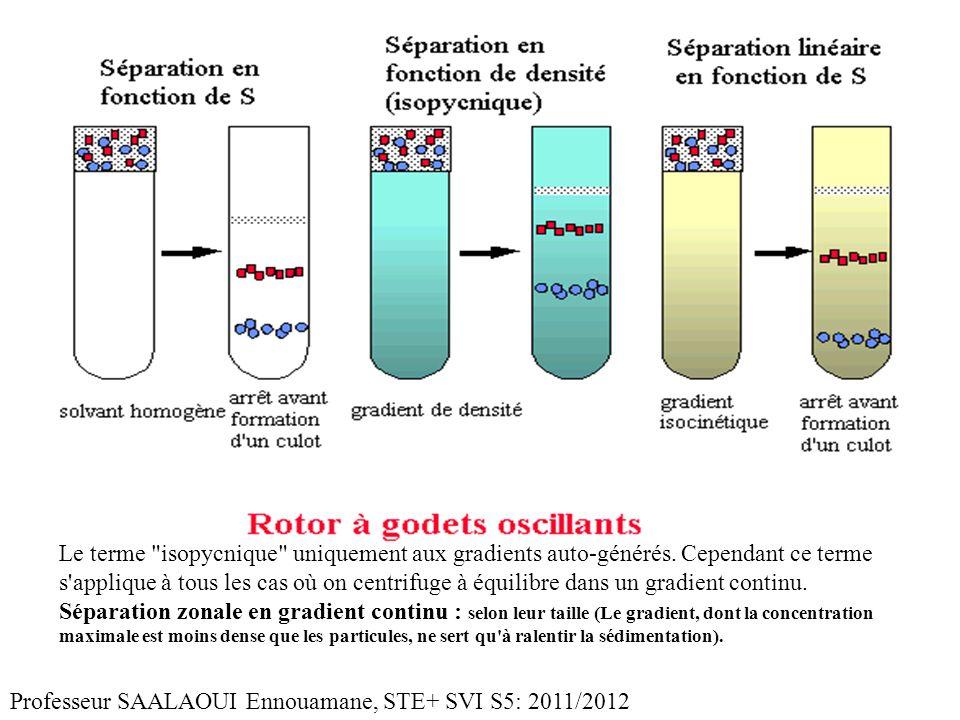 Le terme isopycnique uniquement aux gradients auto-générés.