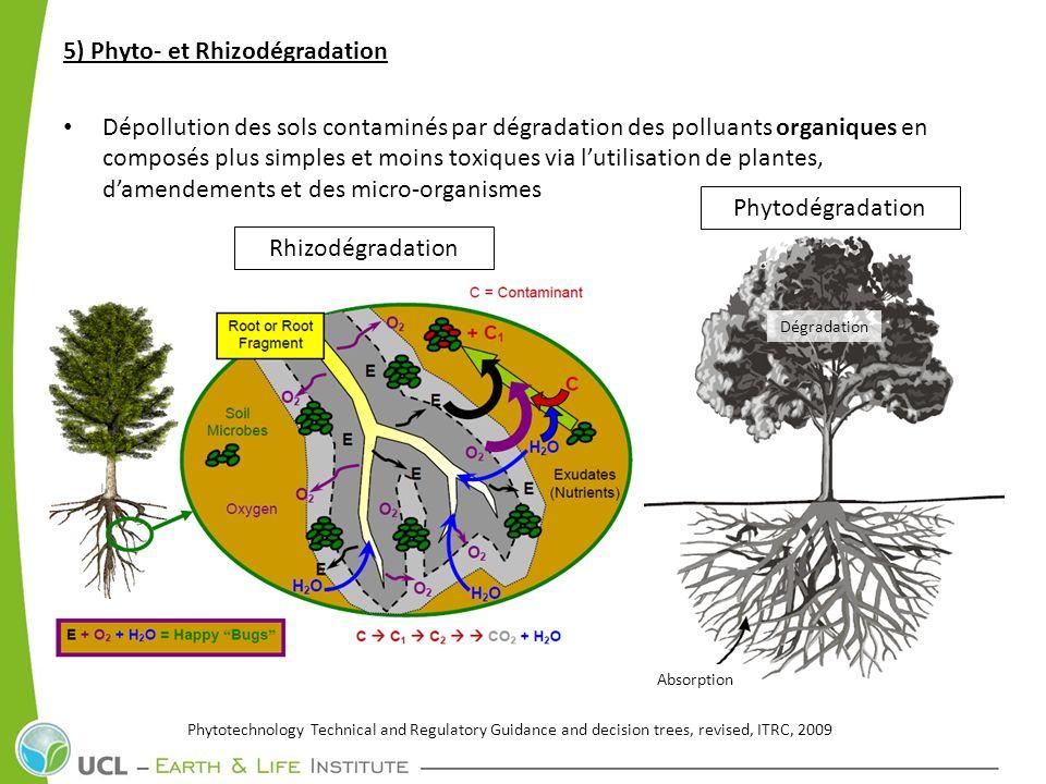 5) Phyto- et Rhizodégradation Dépollution des sols contaminés par dégradation des polluants organiques en composés plus simples et moins toxiques via