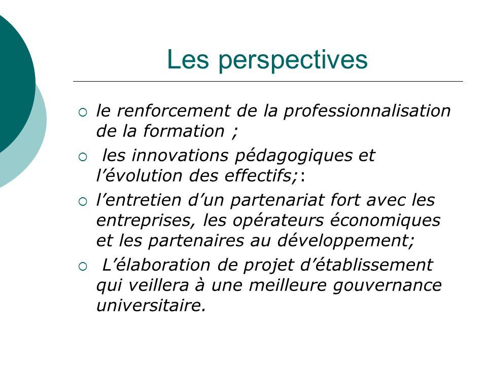 Les perspectives le renforcement de la professionnalisation de la formation ; les innovations pédagogiques et lévolution des effectifs;: lentretien du