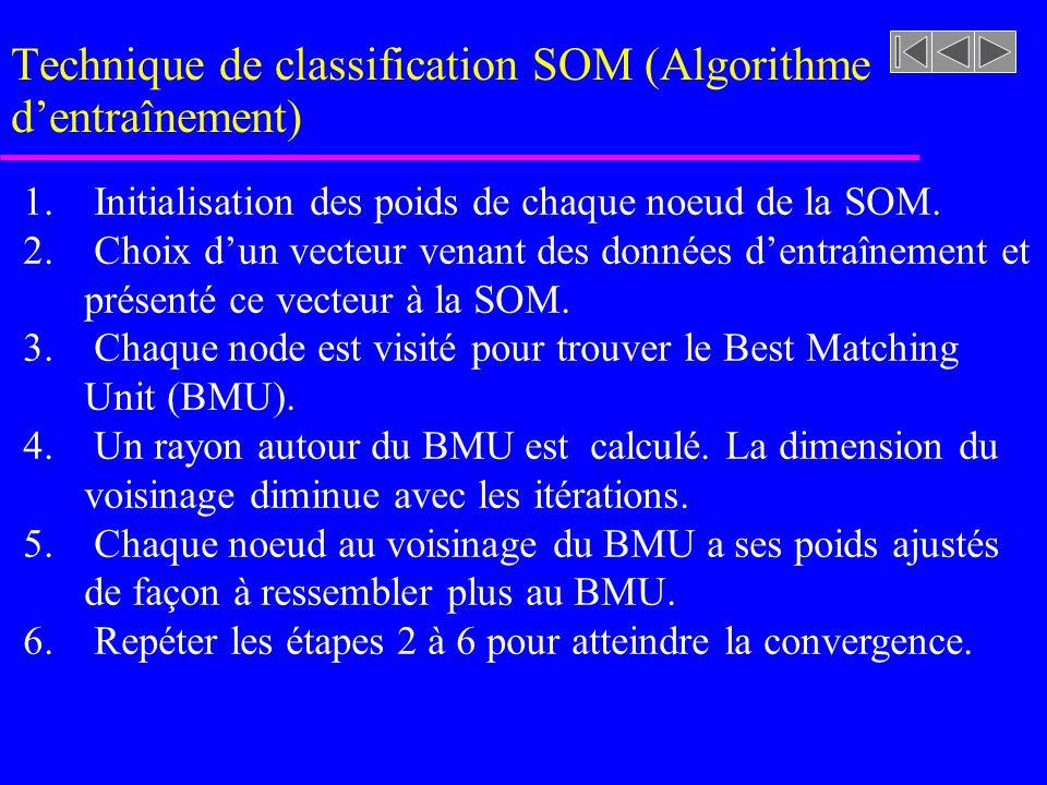 Technique de classification SOM (Algorithme dentraînement) 1. Initialisation des poids de chaque noeud de la SOM. 2. Choix dun vecteur venant des donn