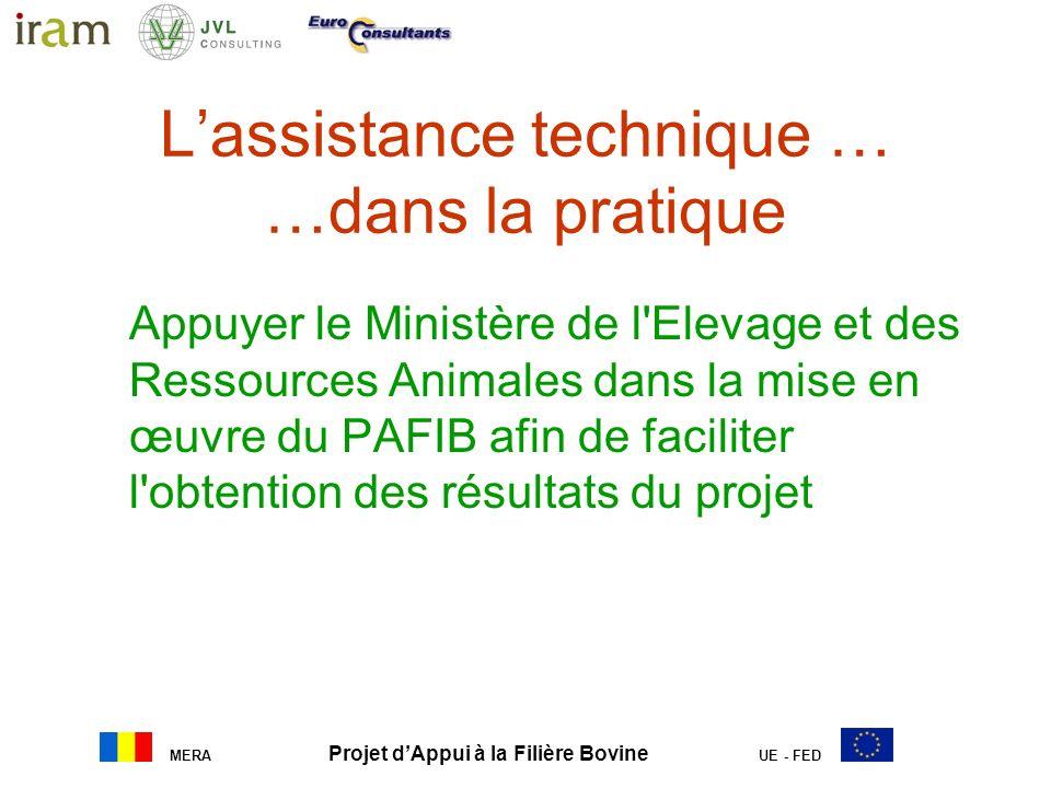 MERA Projet dAppui à la Filière Bovine UE - FED Lassistance technique … …dans la pratique Appuyer le Ministère de l'Elevage et des Ressources Animales