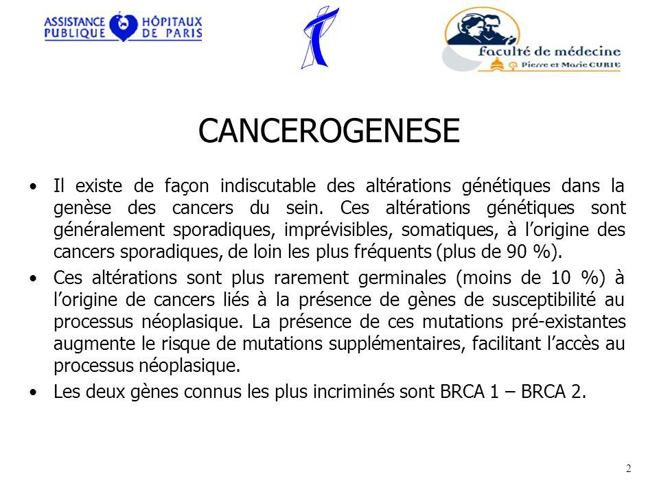 CANCEROGENESE Il existe de façon indiscutable des altérations génétiques dans la genèse des cancers du sein. Ces altérations génétiques sont généralem