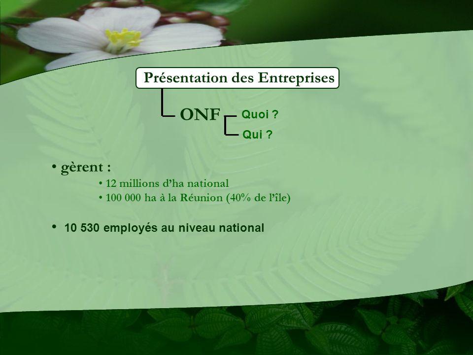 Présentation des Entreprises ONF gèrent : 12 millions dha national 100 000 ha à la Réunion (40% de lîle) 10 530 employés au niveau national Quoi ? Qui