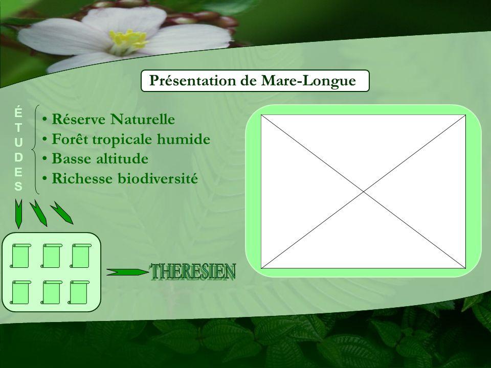 Réserve Naturelle Forêt tropicale humide Basse altitude Richesse biodiversité ÉTUDESÉTUDES
