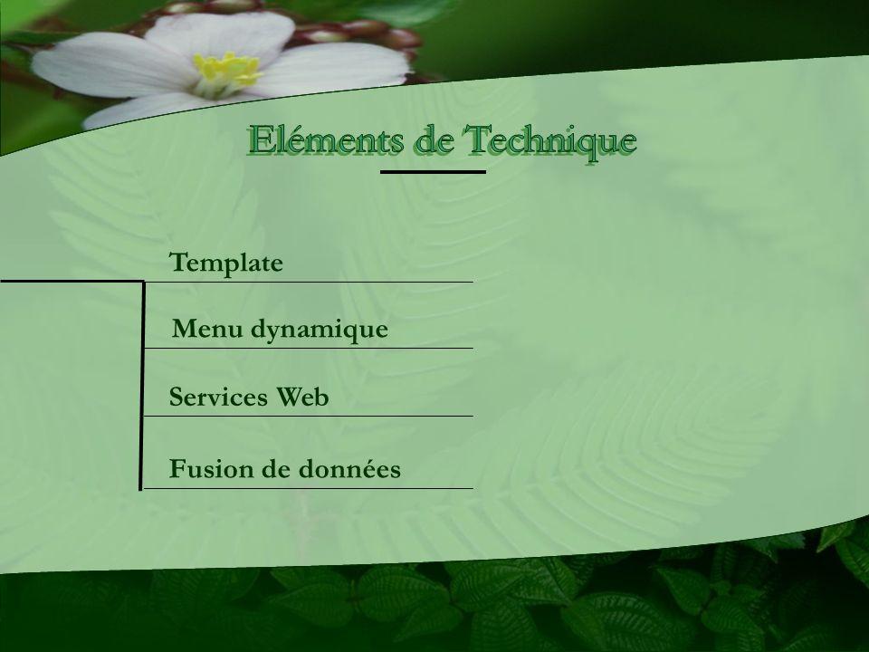 Menu dynamique Template Services Web Fusion de données