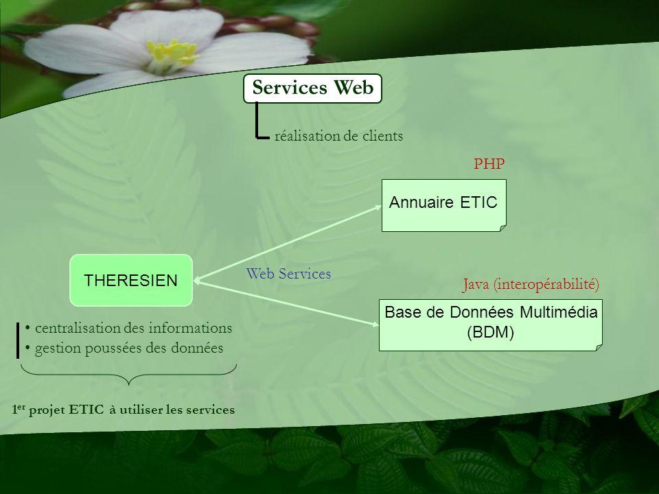 Services Web THERESIEN Annuaire ETIC Base de Données Multimédia (BDM) centralisation des informations gestion poussées des données 1 er projet ETIC à utiliser les services Java (interopérabilité) PHP réalisation de clients Web Services