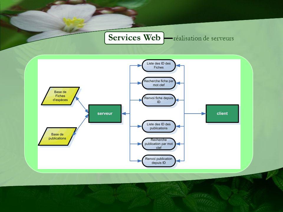 Services Web réalisation de serveurs