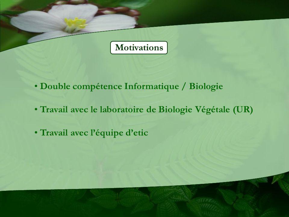 Motivations Double compétence Informatique / Biologie Travail avec le laboratoire de Biologie Végétale (UR) Travail avec léquipe detic