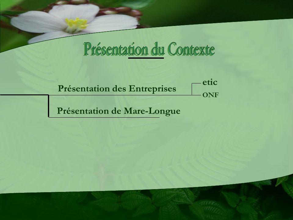 Présentation des Entreprises Présentation de Mare-Longue etic ONF