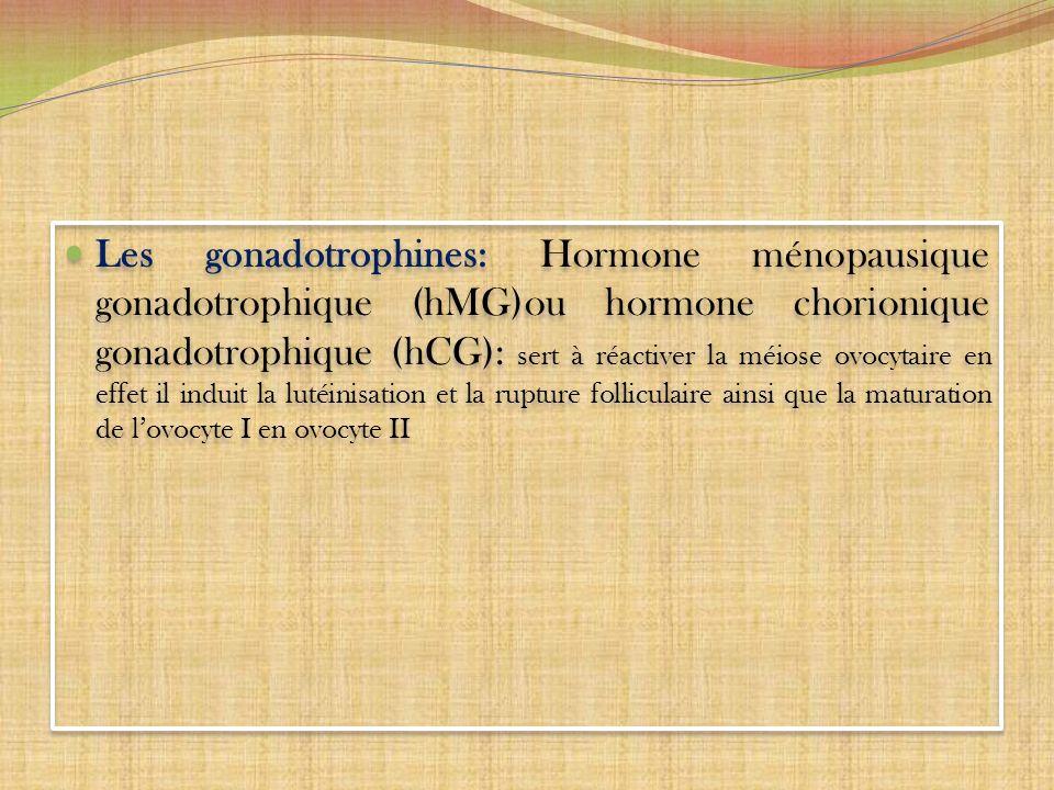 Les gonadotrophines: Hormone ménopausique gonadotrophique (hMG)ou hormone chorionique gonadotrophique (hCG): sert à réactiver la méiose ovocytaire en