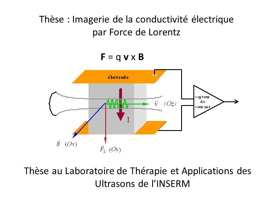 Thèse : Imagerie de la conductivité électrique par Force de Lorentz Thèse au Laboratoire de Thérapie et Applications des Ultrasons de lINSERM F = q v x B