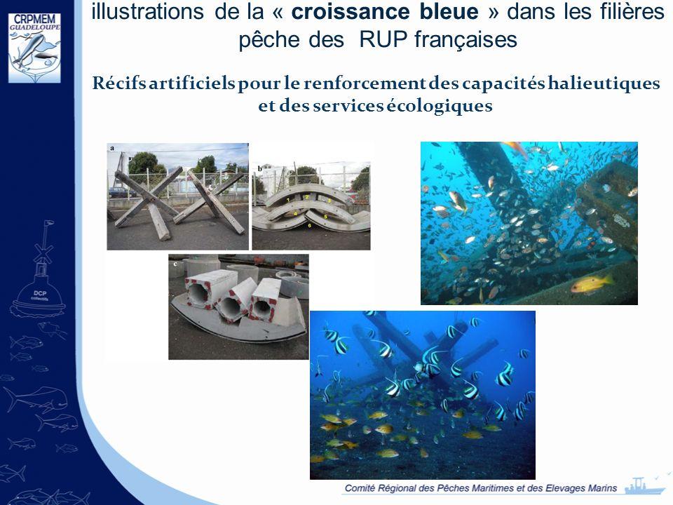 illustrations de la « croissance bleue » dans les filières pêche des RUP françaises Récifs artificiels pour le renforcement des capacités halieutiques