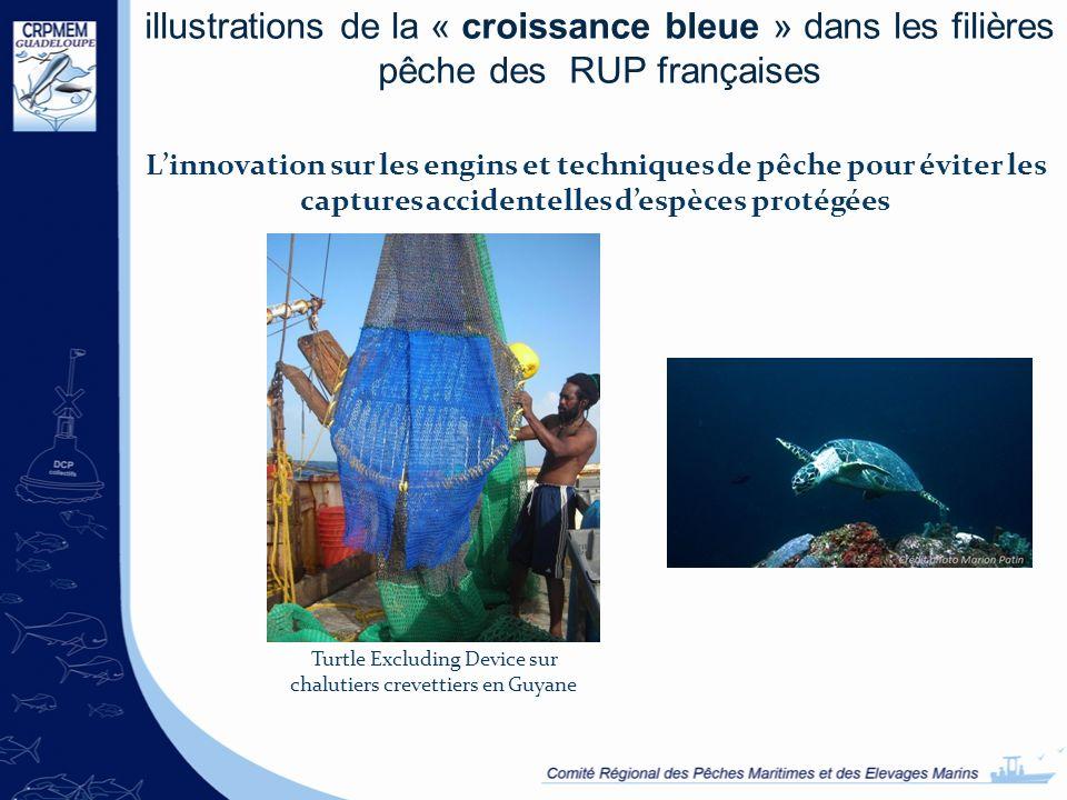 illustrations de la « croissance bleue » dans les filières pêche des RUP françaises Linnovation sur les engins et techniques de pêche pour éviter les