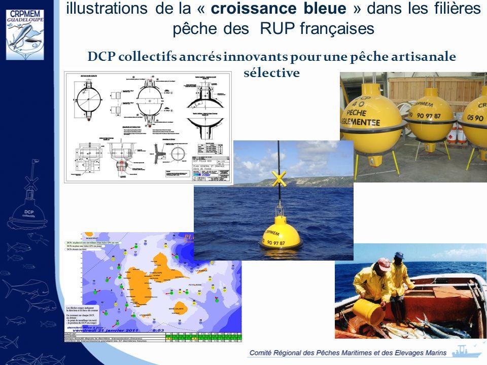 illustrations de la « croissance bleue » dans les filières pêche des RUP françaises DCP collectifs ancrés innovants pour une pêche artisanale sélectiv