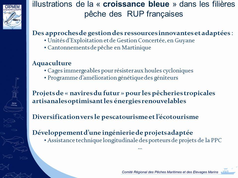illustrations de la « croissance bleue » dans les filières pêche des RUP françaises Des approches de gestion des ressources innovantes et adaptées : U