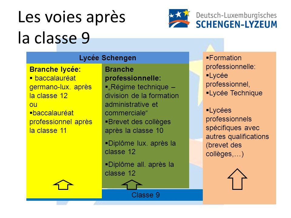 Les voies après la classe 9 Classe 9 Branche lycée: baccalauréat germano-lux.