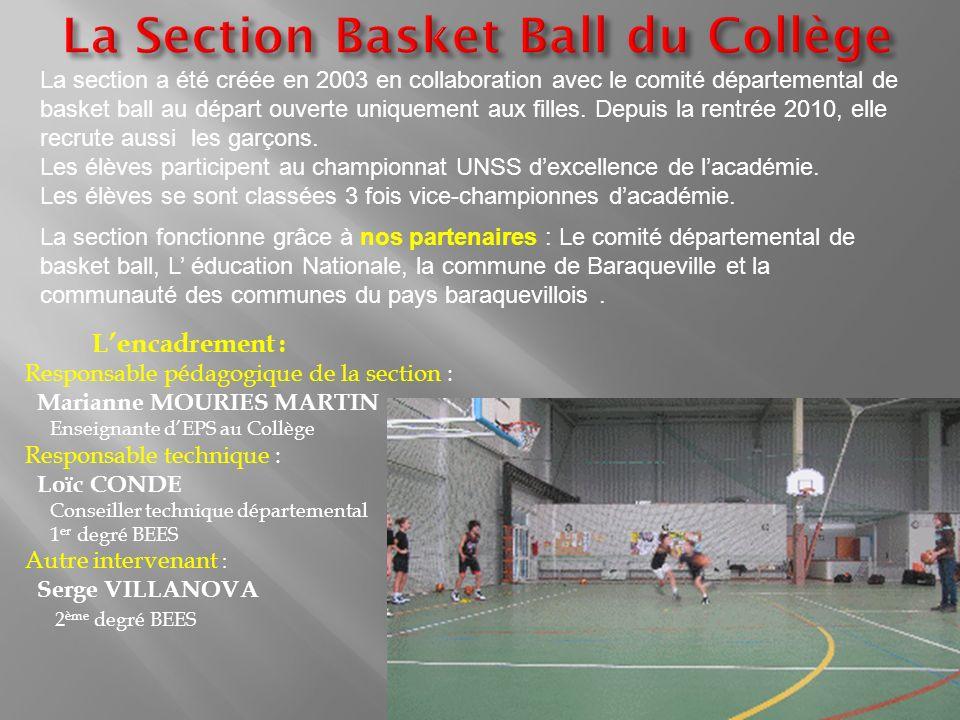 La section a été créée en 2003 en collaboration avec le comité départemental de basket ball au départ ouverte uniquement aux filles. Depuis la rentrée