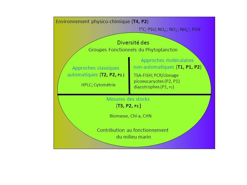 Environnement physico-chimique (T4, P2) T°C; PSU; NO 3 - ; NO 2 - ; NH 4 + ; PO4 - Diversité des Groupes Fonctionnels du Phytoplancton Contribution au fonctionnement du milieu marin Approches classiques automatiques (T2, P2, P1 ) Approches moléculaires non-automatiques (T1, P1, P2) HPLC; Cytométrie TSA-FISH; PCR/clonage picoeucaryotes (P2, P1) diazotrophes (P1, P2 ) Mesures des stocks (T3, P2, P1 ) Biomasse, Chl-a, CHN