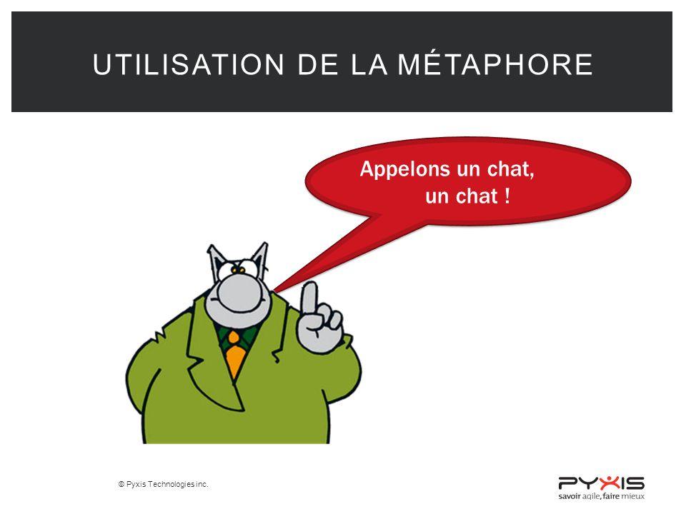 © Pyxis Technologies inc.UTILISATION DE LA MÉTAPHORE Appelons un chat, un chat .
