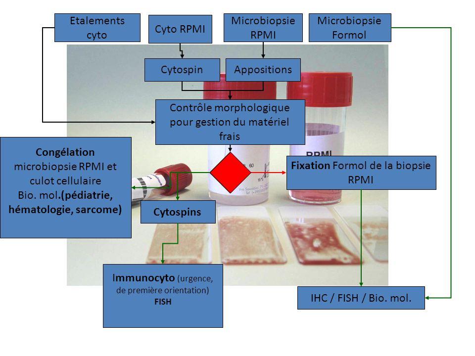 Microbiopsie Formol Cyto RPMI Etalements cyto Microbiopsie RPMI CytospinAppositions Contrôle morphologique pour gestion du matériel frais Cytospins Im