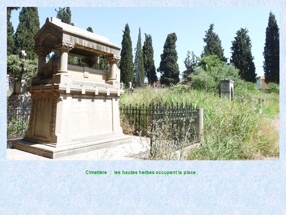 Cimetière : des tombes bien entretenues.