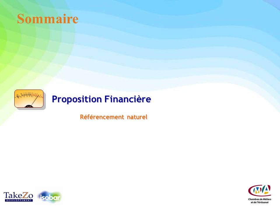 Sommaire Proposition Financière Référencement naturel