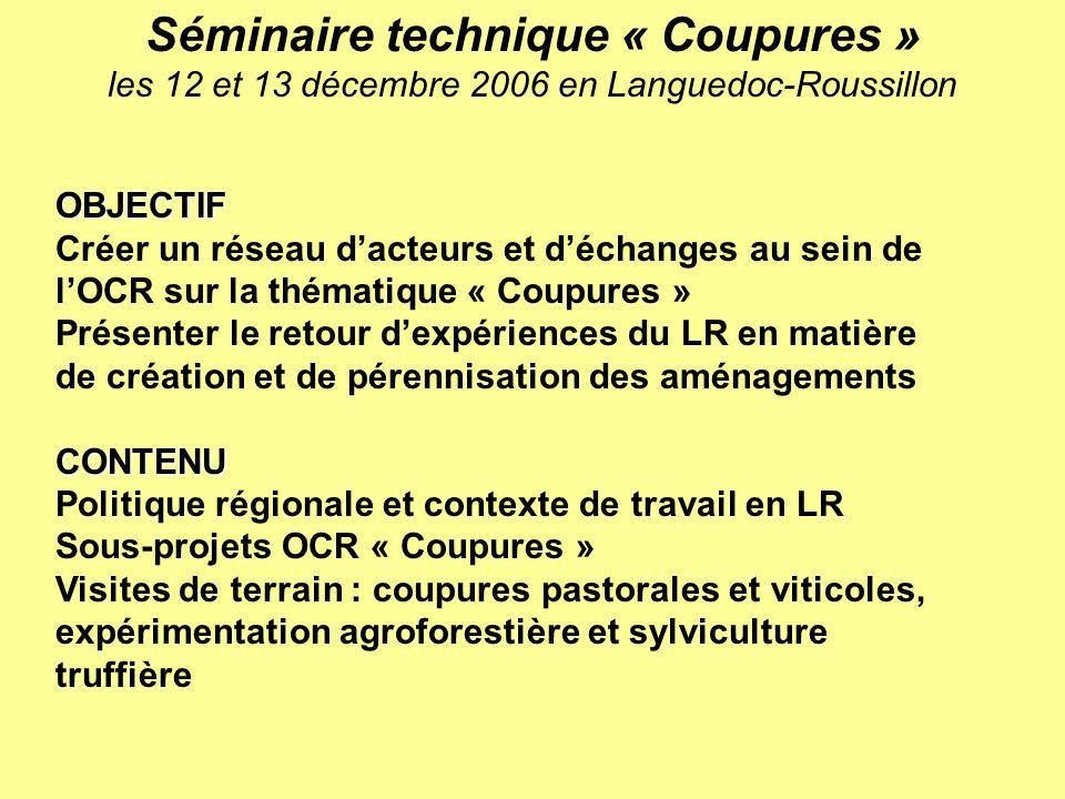 OBJECTIF Créer un réseau dacteurs et déchanges au sein de lOCR sur la thématique « Coupures » Présenter le retour dexpériences du LR en matière de cré